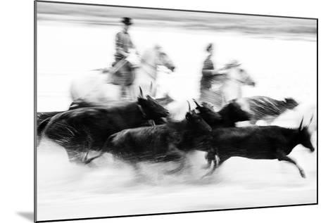 Black Bulls of Camargue and their Herders Running Through the Water, Camargue, France-Nadia Isakova-Mounted Photographic Print