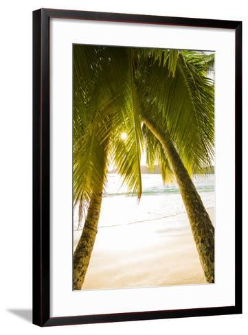 Palm Trees and Tropical Beach, Southern Mahe, Seychelles-Jon Arnold-Framed Art Print