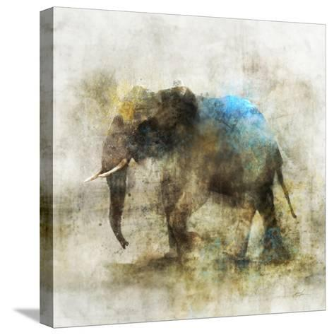 Pachyderm Dance 2-Ken Roko-Stretched Canvas Print
