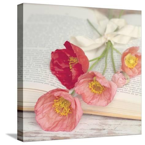 Well Red Poppy-Mandy Lynne-Stretched Canvas Print