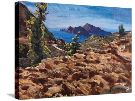Capri from Massalubrense-Eugenio Viti-Stretched Canvas Print