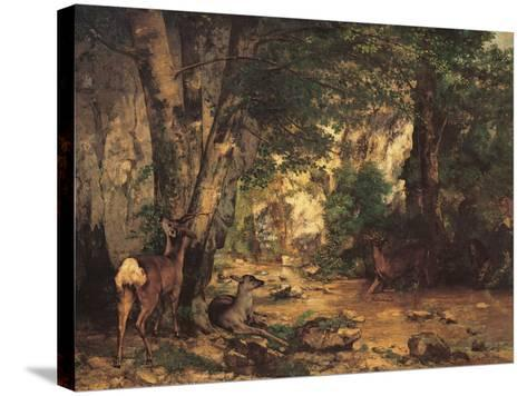 A Thicket of Roe Deer at the Stream of Plaisir Fontaine-Gustave Courbet-Stretched Canvas Print
