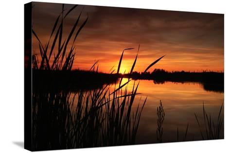 Sunset III-Beth Wold-Stretched Canvas Print