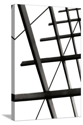 Steel Lattice II-Alan Hausenflock-Stretched Canvas Print