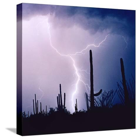 Electric Desert IV-Douglas Taylor-Stretched Canvas Print