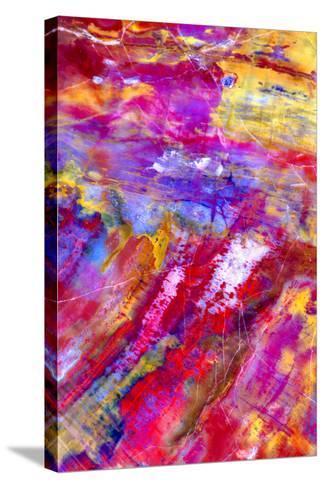 Petrified Wood-Douglas Taylor-Stretched Canvas Print