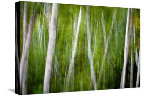 Green Abstract I-Beth Wold-Stretched Canvas Print