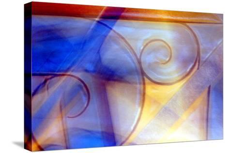 Foxfire-Douglas Taylor-Stretched Canvas Print