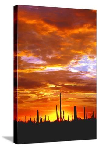 Sky a Fire I-Douglas Taylor-Stretched Canvas Print