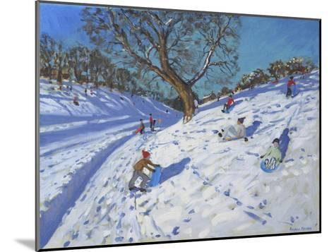 Bright Morning, Chatsworth, 2013-Andrew Macara-Mounted Giclee Print