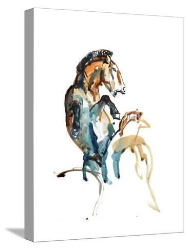 Spirit (Przewalski), 2013-Mark Adlington-Stretched Canvas Print