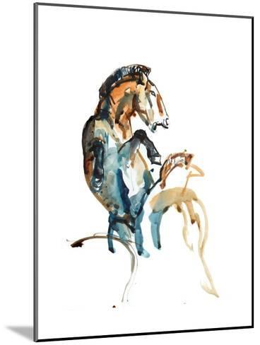 Spirit (Przewalski), 2013-Mark Adlington-Mounted Giclee Print