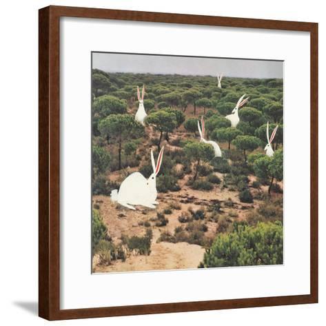 Hide and Peek-Danielle Kroll-Framed Art Print
