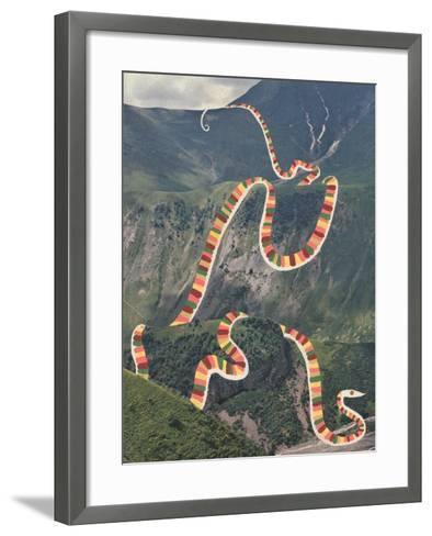 Slinky Snake-Danielle Kroll-Framed Art Print