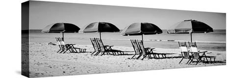 Beach Reunion-Gail Peck-Stretched Canvas Print