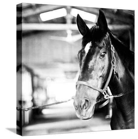 Derby Square I-Susan Bryant-Stretched Canvas Print