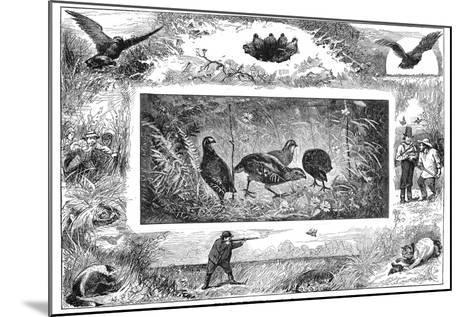 Quail Hunting, 1880--Mounted Giclee Print