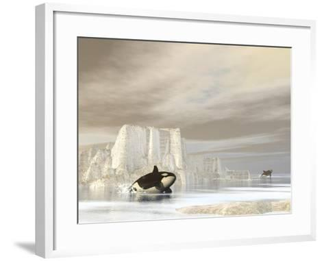 Two Killer Whales Swimming Near Icebergs on a Cloudy Day--Framed Art Print