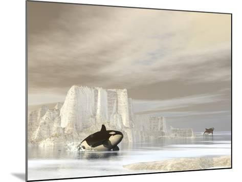 Two Killer Whales Swimming Near Icebergs on a Cloudy Day--Mounted Art Print