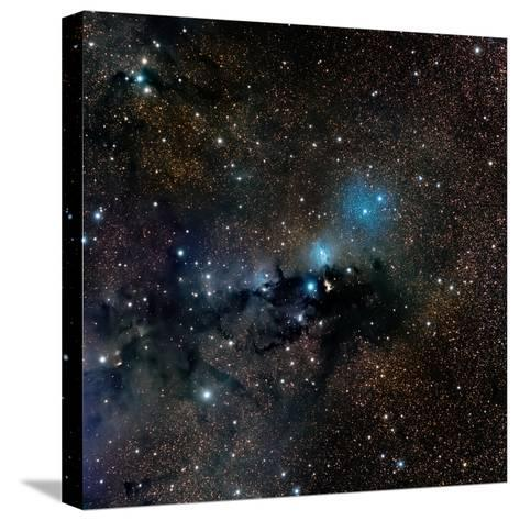 Vdb 123 Reflection Nebula in the Constellation Serpens--Stretched Canvas Print