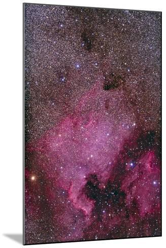 Ngc 7000 and the Pelican Nebula--Mounted Photographic Print