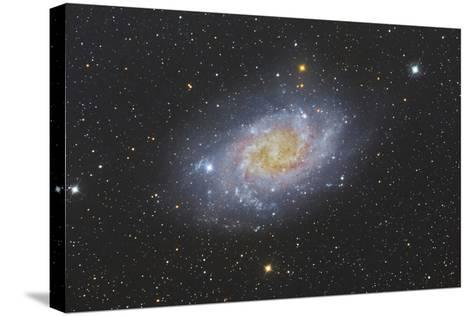 The Triangulum Galaxy, also known as Messier 33--Stretched Canvas Print