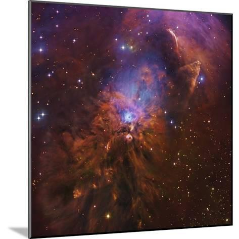 Ngc 1999, Bright Reflection Nebula in Orion--Mounted Photographic Print