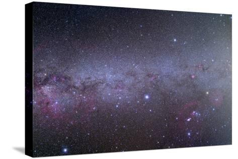 Mosaic of the Southern Milky Way from Orion to Vela--Stretched Canvas Print