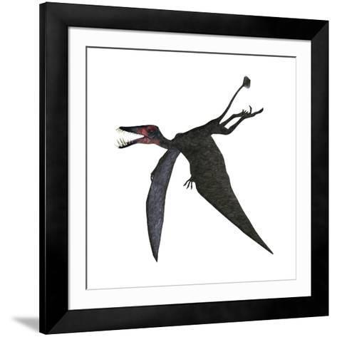 Dorygnathus, a Genus of Pterosaur from the Jurassic Period--Framed Art Print