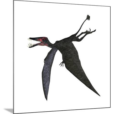 Dorygnathus, a Genus of Pterosaur from the Jurassic Period--Mounted Art Print