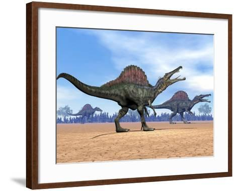 Three Spinosaurus Dinosaurs Walking in the Desert--Framed Art Print