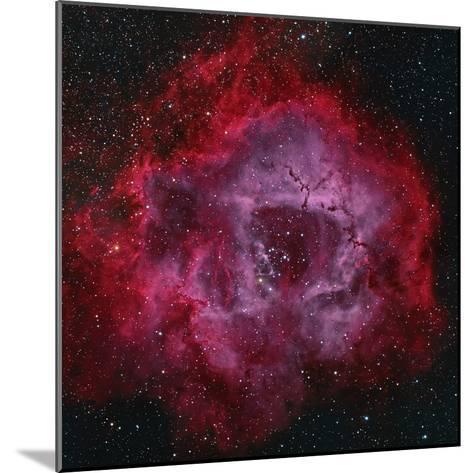 The Rosette Nebula--Mounted Photographic Print