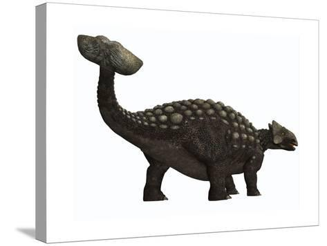 Ankylosaurus, a Heavily Armored Dinosaur from the Cretaceous Period--Stretched Canvas Print