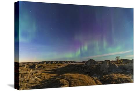 Aurora Borealis over the Badlands of Dinosaur Provincial Park, Canada--Stretched Canvas Print