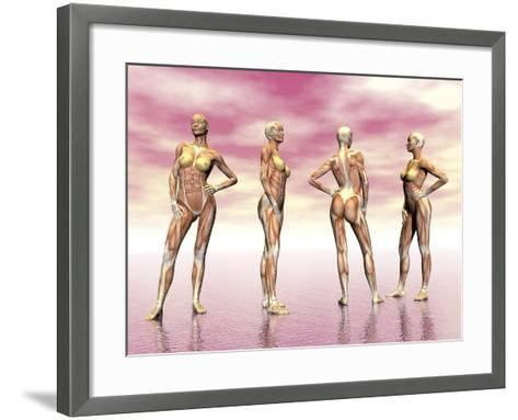 Female Muscular System from Four Points of View--Framed Art Print