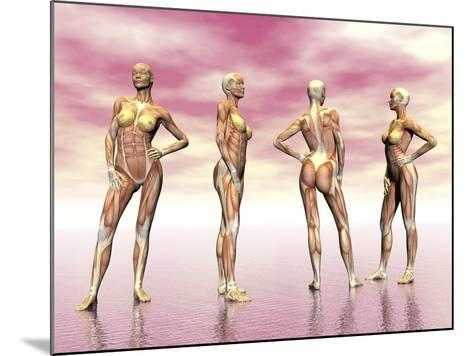 Female Muscular System from Four Points of View--Mounted Art Print
