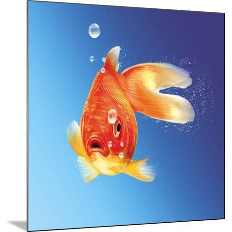 Goldfish with Water Bubbles--Mounted Art Print