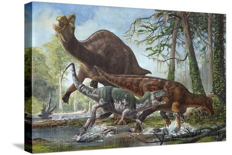 Labocania Attacking a Magnapaulia Dinosaur--Stretched Canvas Print