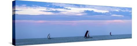 Negombo, Traditional Outrigger Fishing Boats (Oruva) Returning to Negombo Fishing Market, Sri Lanka-Matthew Williams-Ellis-Stretched Canvas Print