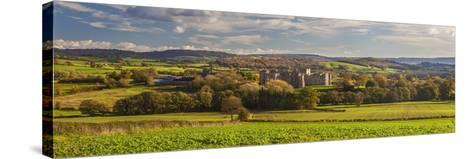 Raglan Castle, Monmouthshire, Wales, United Kingdom, Europe-Billy Stock-Stretched Canvas Print