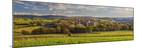 Raglan Castle, Monmouthshire, Wales, United Kingdom, Europe-Billy Stock-Mounted Photographic Print