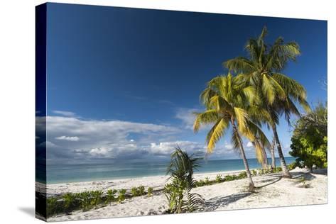 Denis Island, Seychelles, Indian Ocean, Africa-Sergio Pitamitz-Stretched Canvas Print
