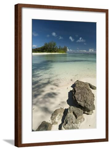 Denis Island, Seychelles, Indian Ocean, Africa-Sergio Pitamitz-Framed Art Print