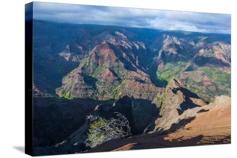 View over the Waimea Canyon, Kauai, Hawaii, United States of America, Pacific-Michael Runkel-Stretched Canvas Print