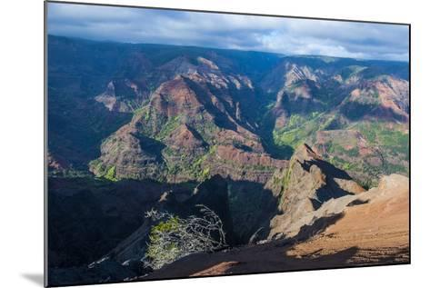 View over the Waimea Canyon, Kauai, Hawaii, United States of America, Pacific-Michael Runkel-Mounted Photographic Print