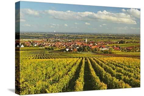 Vineyard Landscape and Maikammer Village, German Wine Route, Rhineland-Palatinate, Germany, Europe-Jochen Schlenker-Stretched Canvas Print