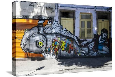Graffiti Art Work on Houses in Lapa, Rio De Janeiro, Brazil, South America-Michael Runkel-Stretched Canvas Print