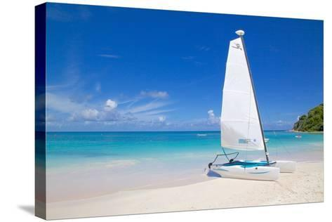 Beach and Hobie Cat, Long Bay, Antigua, Leeward Islands, West Indies, Caribbean, Central America-Frank Fell-Stretched Canvas Print
