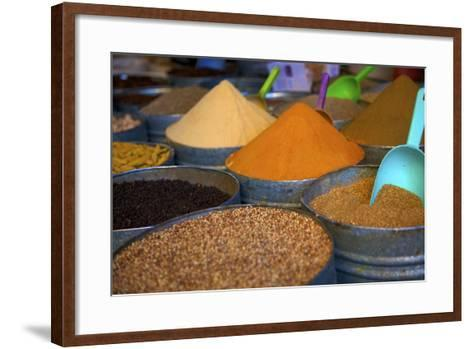 Spices, Fez, Morocco, North Africa, Africa-Neil Farrin-Framed Art Print
