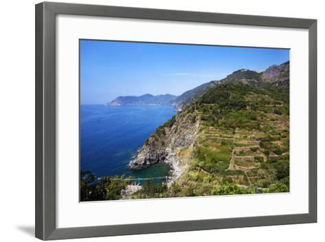 Terraced Vineyards at Corniglia-Mark Sunderland-Framed Art Print